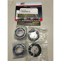 Honda TRX 300 2X4 FRONT WHEEL BEARING AND SEAL KIT 1993  2000 ALL BALLS  25-1112